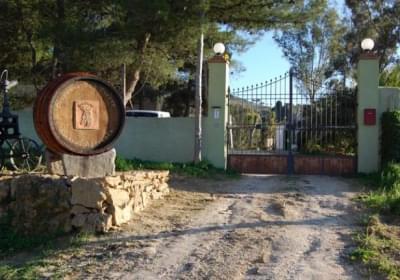 Casa Vacanze Azienda Vitivinicola Dispensa San Pietro